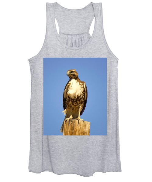 Red-tailed Hawk On Post Women's Tank Top