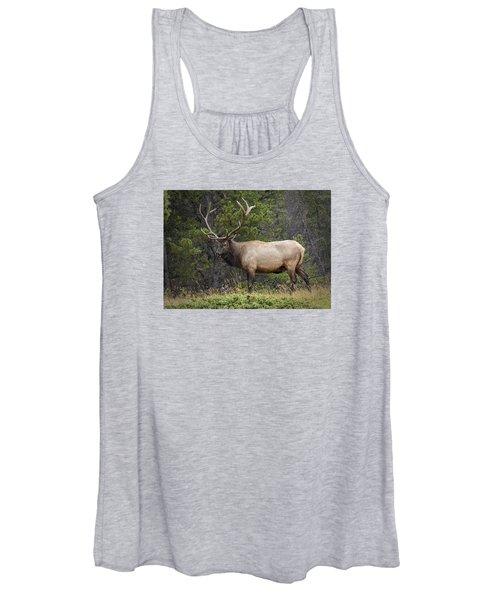 Rocky Mountain National Park Bull Elk Women's Tank Top