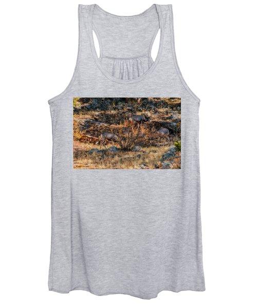 Rocky Mountain National Park Deer Colorado Women's Tank Top
