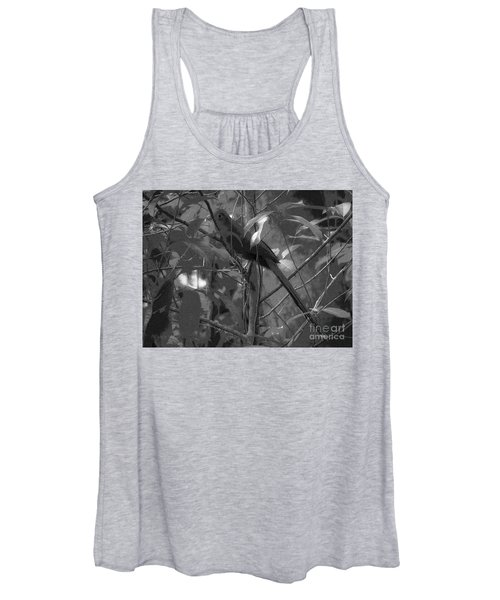 Squirrel Cuckoo  Women's Tank Top