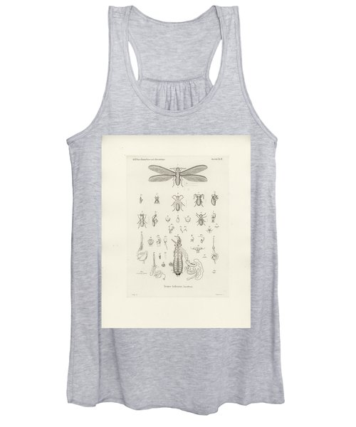 Termites, Macrotermes Bellicosus Women's Tank Top