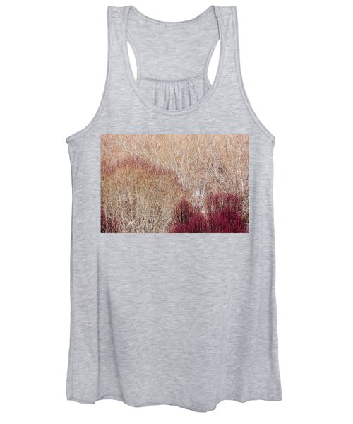 Willows In Winter Women's Tank Top