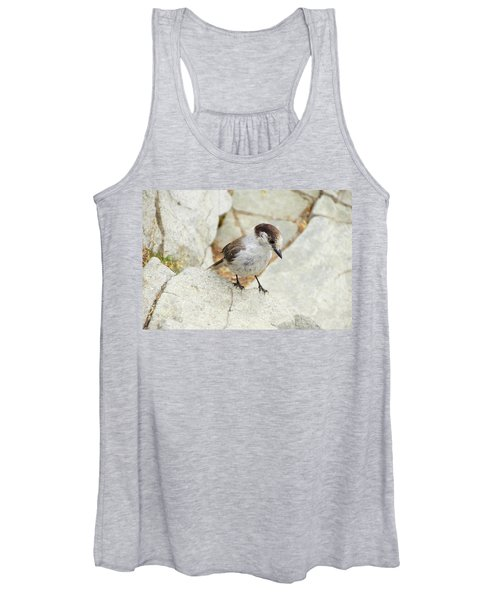 Camprobber - The Gray Jay Women's Tank Top