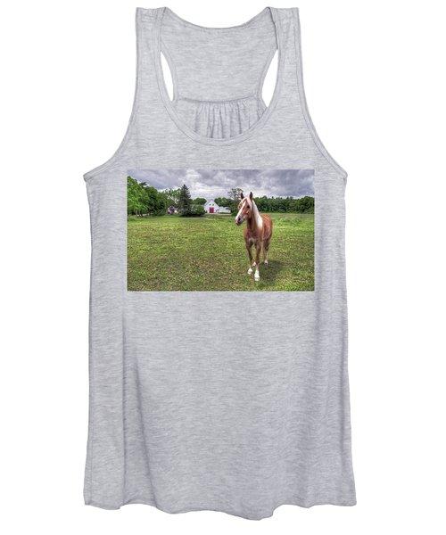 Horse In Pasture Women's Tank Top