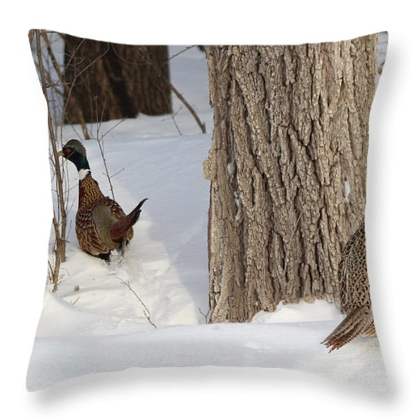 Undercover Throw Pillow by Lori Tordsen