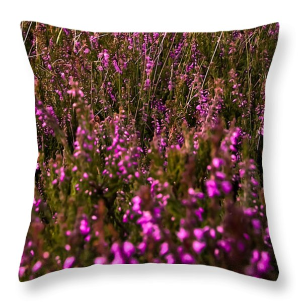 August Field Throw Pillow by Svetlana Sewell