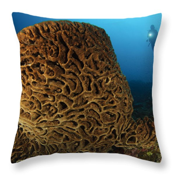 The Salvador Dali Sponge With Intricate Throw Pillow by Steve Jones