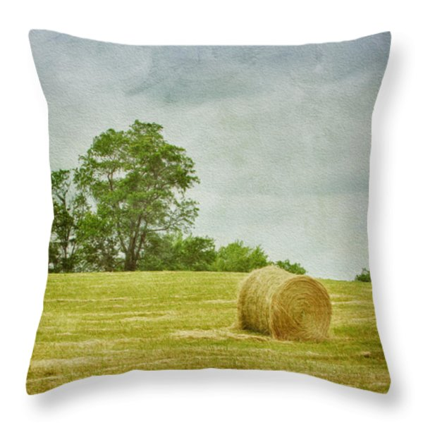 A Day At The Farm Throw Pillow by Kim Hojnacki