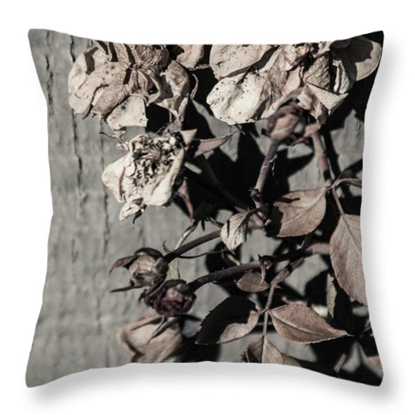 Almost Gone Throw Pillow by Lauri Novak