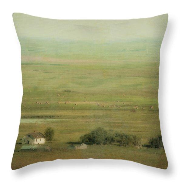 An Abandoned Farmhouse Throw Pillow by Roberta Murray
