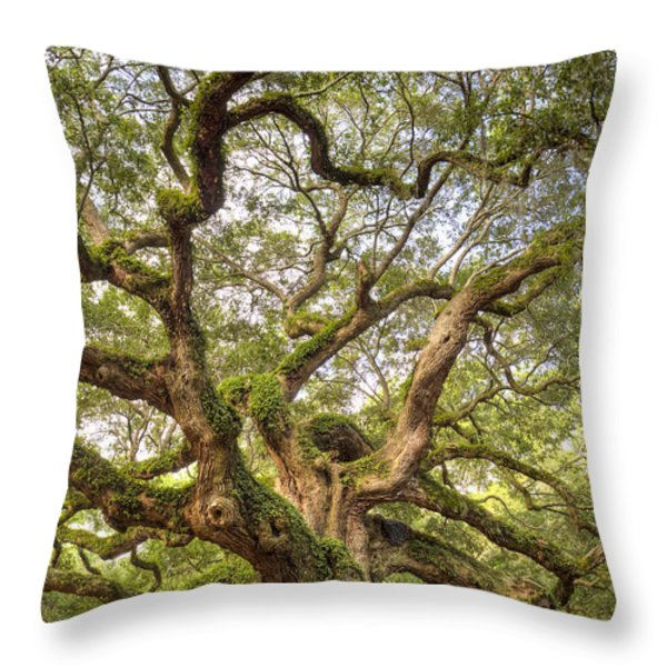 Angel Oak Tree Johns Island Sc Throw Pillow by Dustin K Ryan