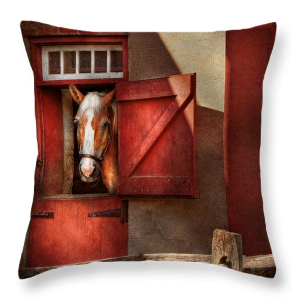 Animal - Horse - Calvins House  Throw Pillow by Mike Savad