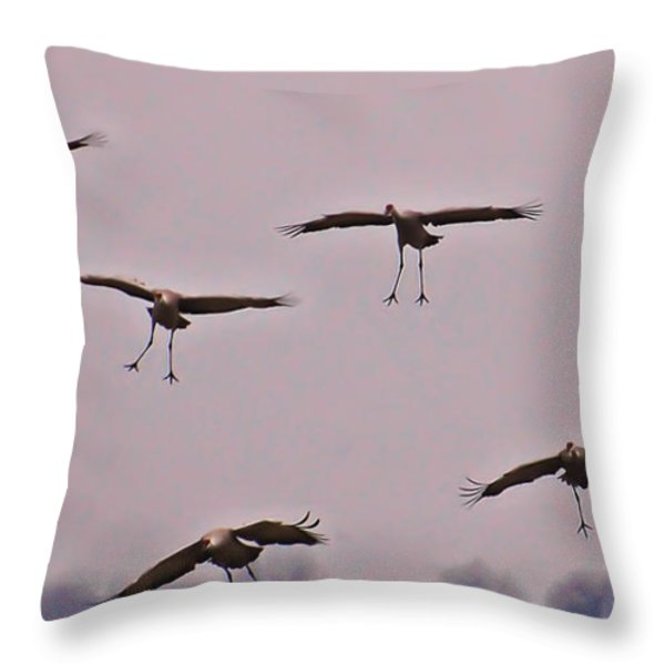 Are You Sure this is the Spot Throw Pillow by Don Schwartz