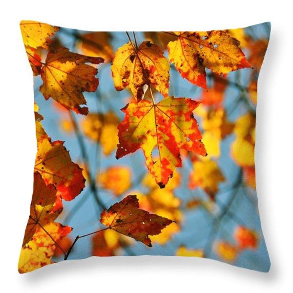 Autumn Petals Throw Pillow by JAMART Photography