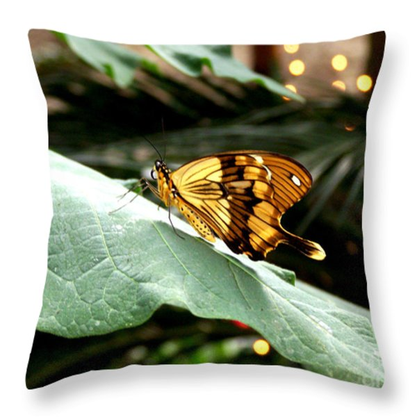 Beautiful Blessings Throw Pillow by Kathy  White