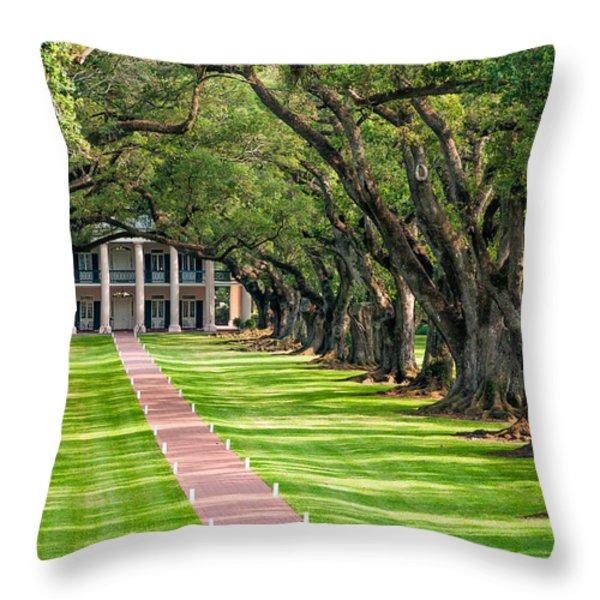 Beneath Live Oaks Throw Pillow by Steve Harrington