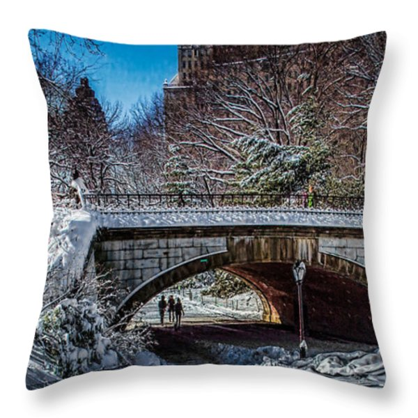 Central Park After Nemo Throw Pillow by Chris Lord