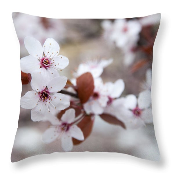 Cherry Blossoms Throw Pillow by Hannes Cmarits