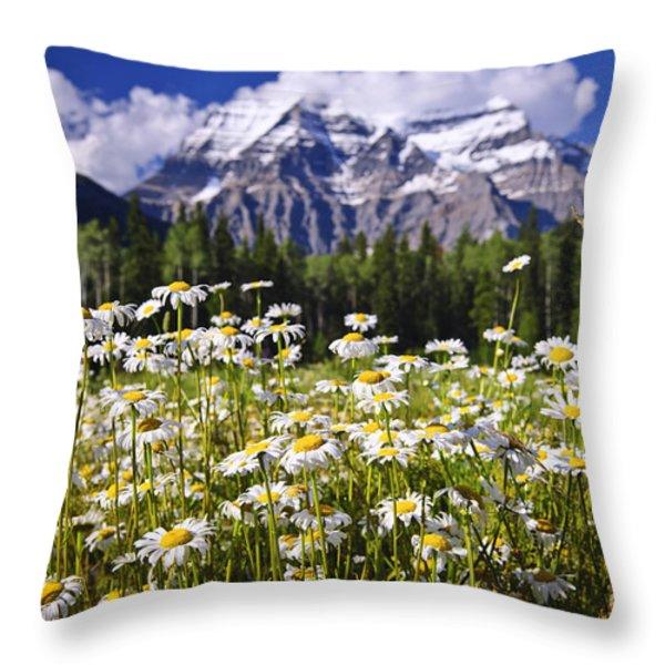 Daisies at Mount Robson Throw Pillow by Elena Elisseeva