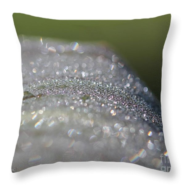 Dewdrops On Wyoming's Leaves Throw Pillow by J McCombie