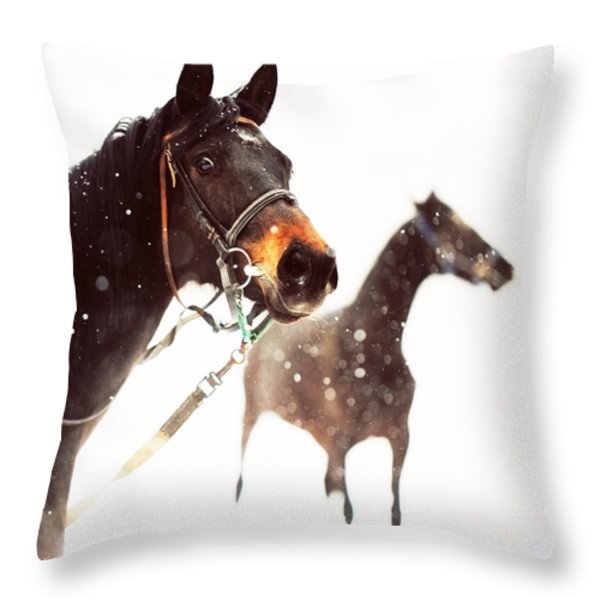 Everyone Has A Dream Throw Pillow by Jenny Rainbow