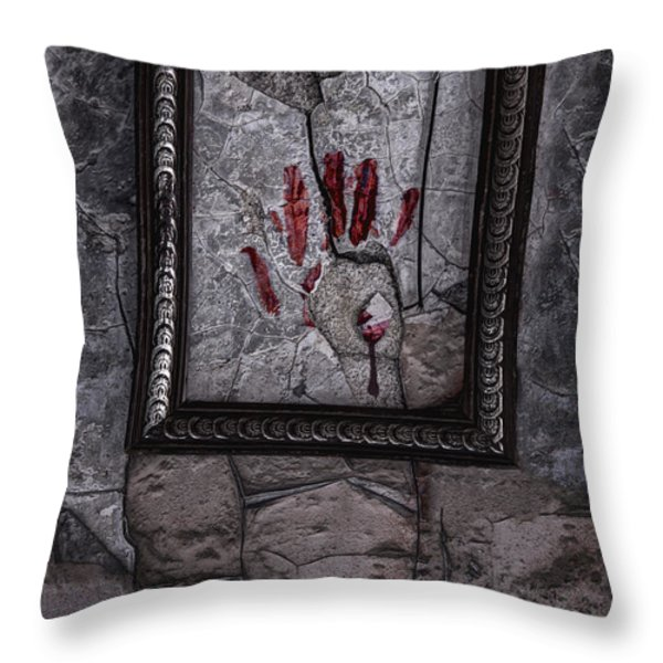 Framed Throw Pillow by Margie Hurwich