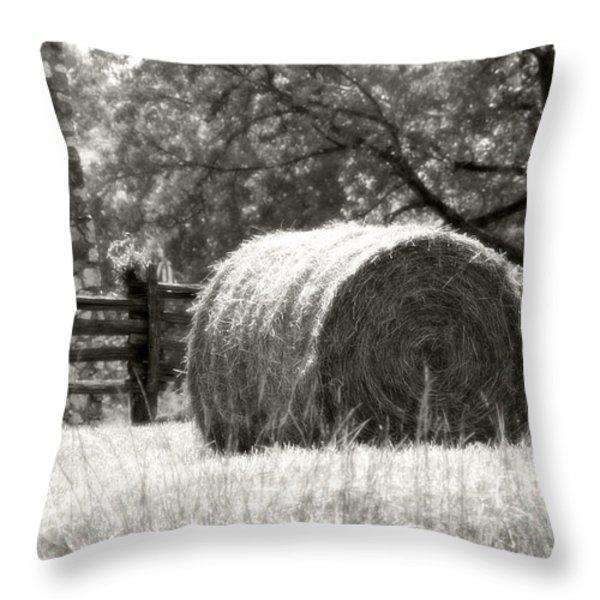 Hay Bale In A Farm Field Throw Pillow by Heather Allen