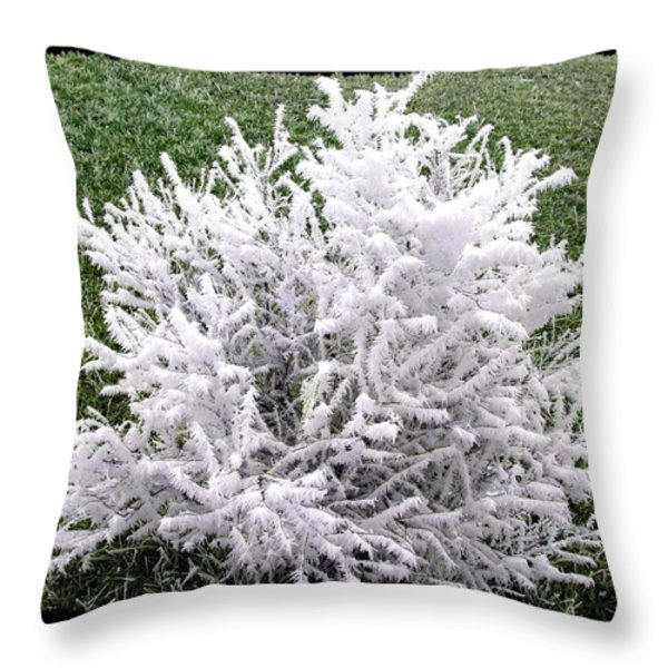 Hoarfrost 20 Throw Pillow by Will Borden