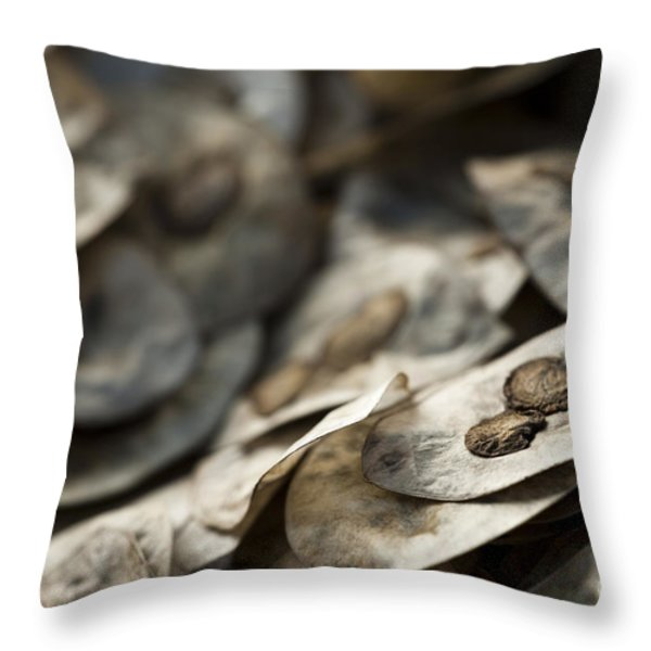 Honesty Seeds Throw Pillow by Anne Gilbert