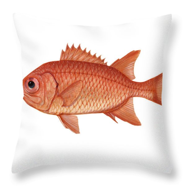 Illustration Of A Brick Soldierfish Throw Pillow by Carlyn Iverson