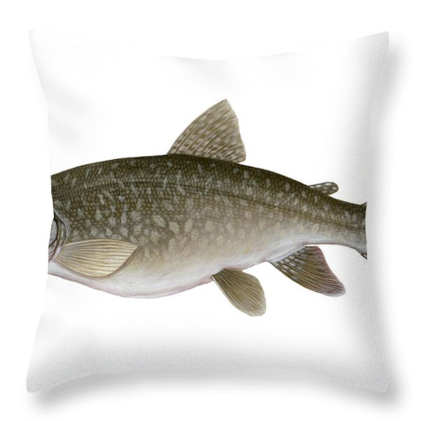 Illustration Of A Lake Trout Salvelinus Throw Pillow by Carlyn Iverson