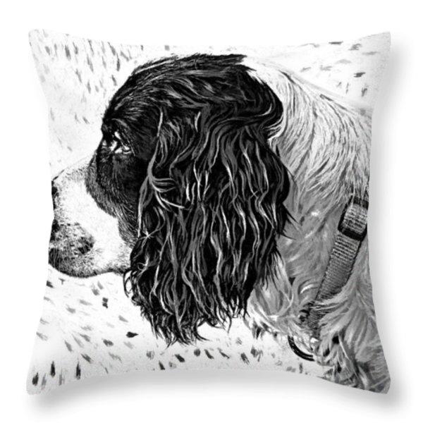 Kaya Wood Carving Filter Throw Pillow by Steve Harrington