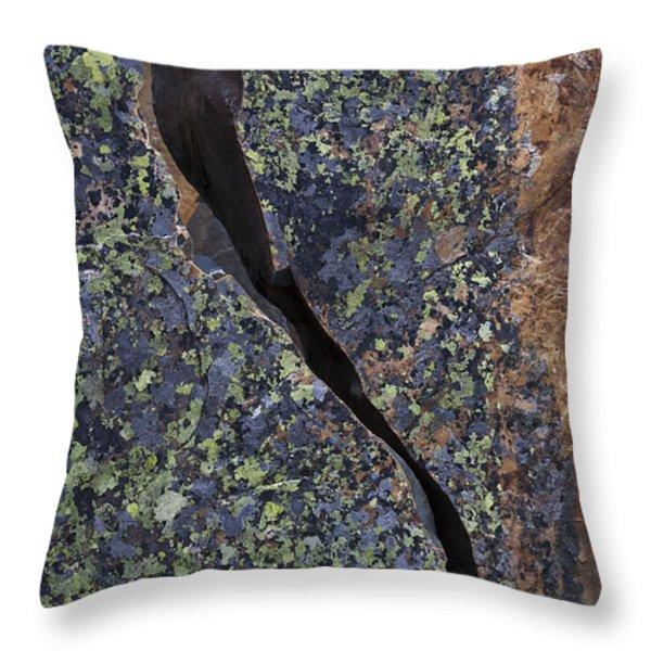 Lichen On Granite Throw Pillow by Heiko Koehrer-Wagner