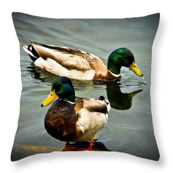 Mallards On Mendota Throw Pillow by Christi Kraft