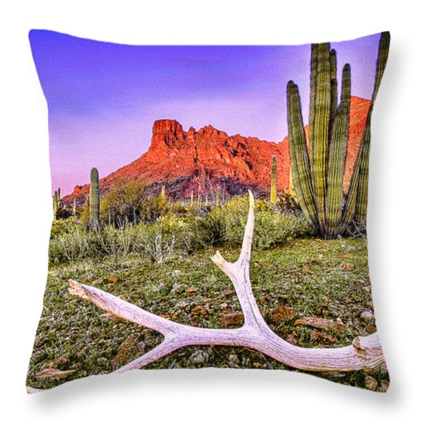 Morning In Organ Pipe Cactus National Monument Throw Pillow by Bob and Nadine Johnston