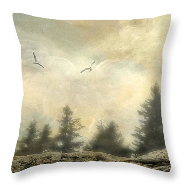 Morning On The Coast Throw Pillow by Darren Fisher