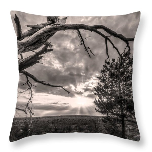Natures Arch Throw Pillow by Debra and Dave Vanderlaan