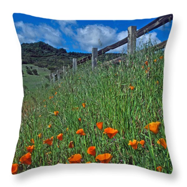 Poppies And The Fence Throw Pillow by Kathy Yates