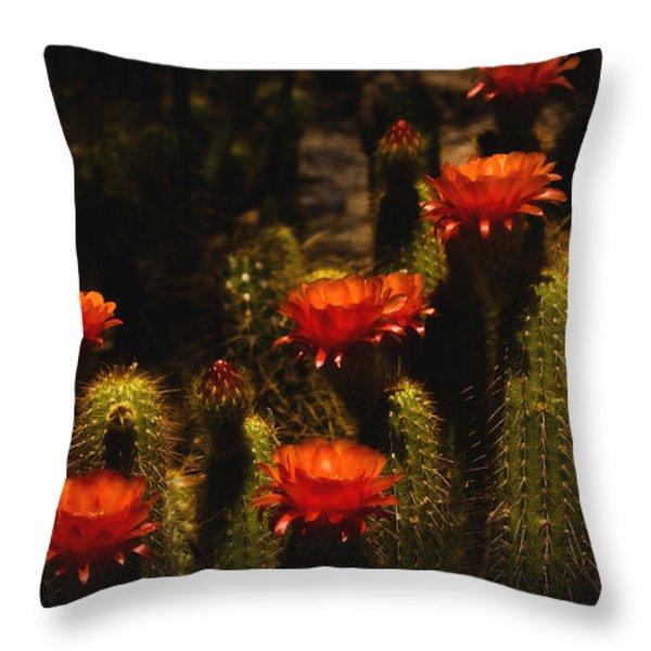 Red Cactus Flowers  Throw Pillow by Saija  Lehtonen