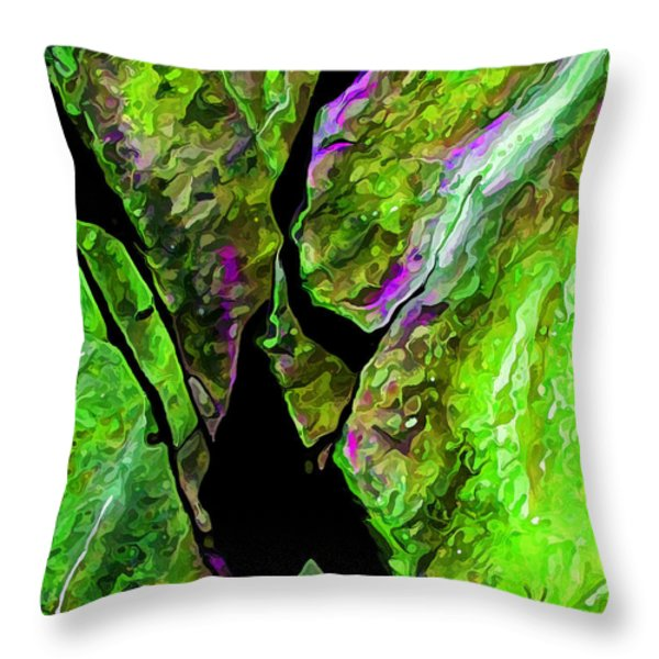 Rock Art 17 in Green Throw Pillow by Bill Caldwell -        ABeautifulSky Photography