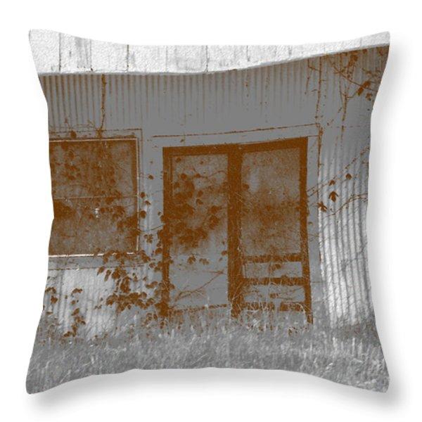 Seen Better Days Throw Pillow by Connie Fox