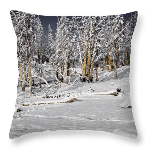 Snowy Silence Throw Pillow by Chris Brannen