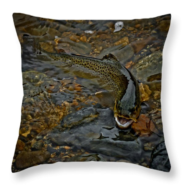 The Brown Trout Throw Pillow by Ernie Echols