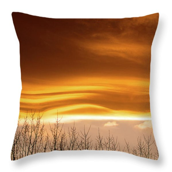 The Flow Throw Pillow by Jim Garrison