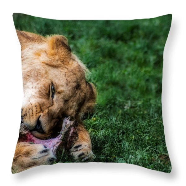 The Prince Is Hungry Throw Pillow by Hannes Cmarits