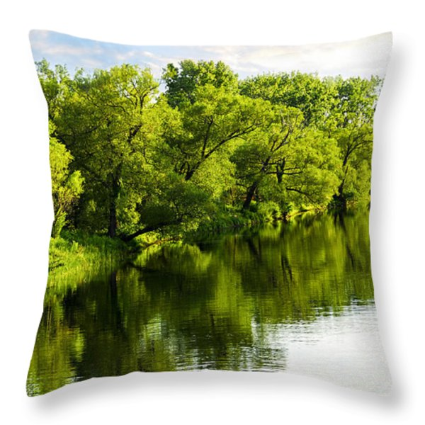 Trees Reflecting In River Throw Pillow by Elena Elisseeva