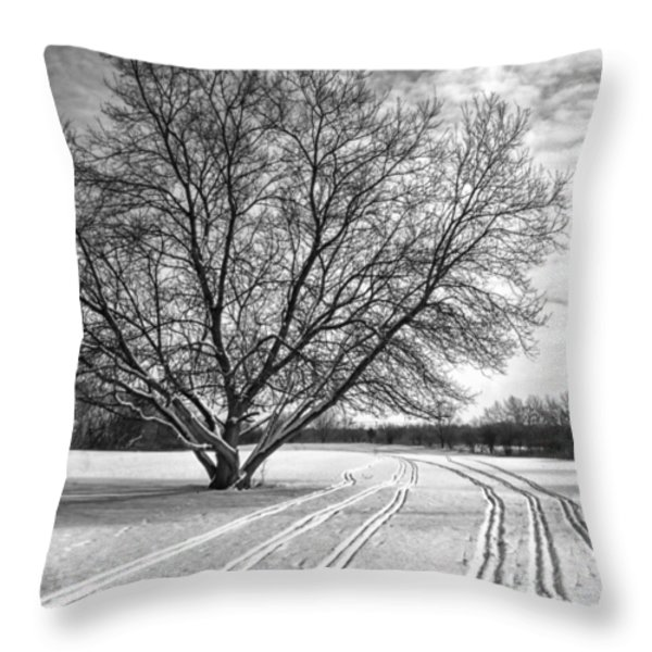 Winter Lines Throw Pillow by Lauri Novak