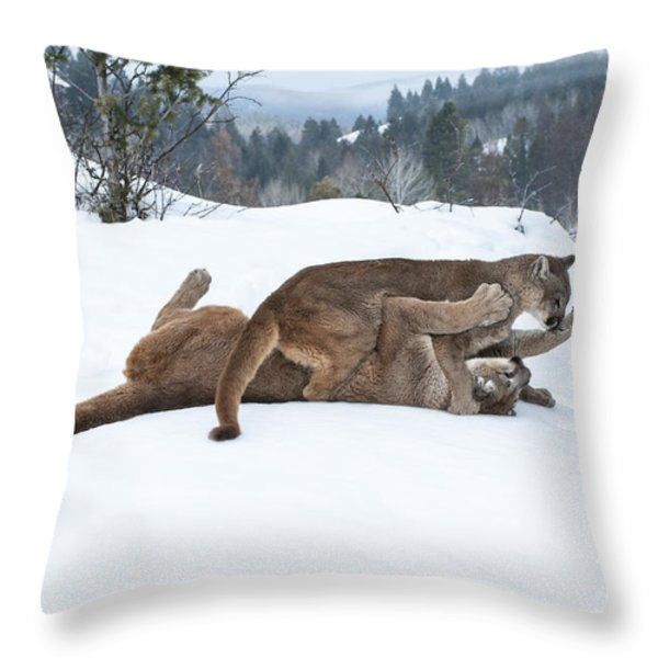 Winter Playground Throw Pillow by Sandra Bronstein