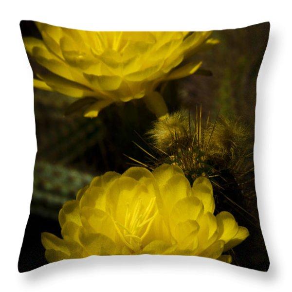 Yellow Torch Cactus  Throw Pillow by Saija  Lehtonen