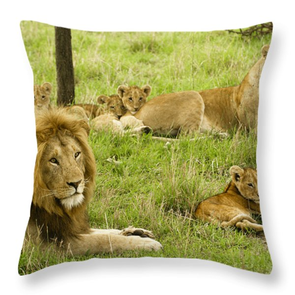It's All About Family Throw Pillow by Michele Burgess